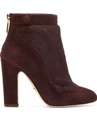 Dolce & Gabbana Plum Suede And Calf_Hair Ankle Boots - Lyst