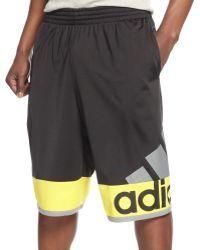Adidas Crazy Fresh Shorts - Lyst