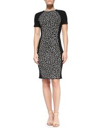 Tory Burch Gemma Shortsleeve Ponydot Dress - Lyst