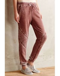 Anthropologie Quilted Moto Sweatpants - Lyst