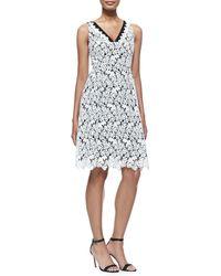 Erdem Elizabeth Sleeveless Floral Lace Dress - Lyst