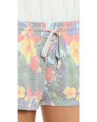 Sol Angeles | Parrot Bay Shorts | Lyst