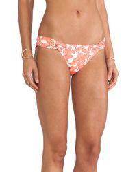 Shoshanna Coral Reef Bikini Bottom - Lyst
