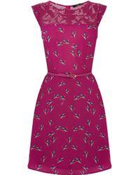 Oasis Bloom Bird Lace Trim Skater Dress - Lyst