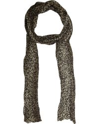 Saint Laurent Baby Cat Narrow Scarf - Lyst