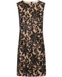 Diane von Furstenberg - Kaleb Black Sequinned Lace Dress - Lyst