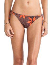Tallow - Mudhoney Bandeau Bikini - Lyst