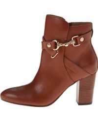 Isola Brown Colleen - Lyst