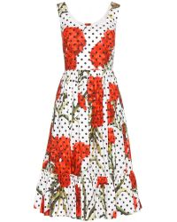 Dolce & Gabbana Floral-printed Cotton Dress - Lyst