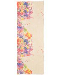 Pashma - Cashmere-silk Print Scarf - Lyst
