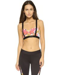 Rebecca Minkoff - Rm Active Carly Floral Bra Top - Multi - Lyst