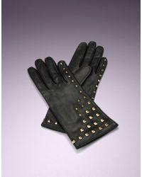 Agent Provocateur - Paris Glove Black/gold - Lyst