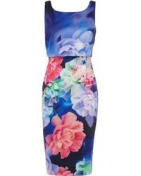Coast Dominique Print Dress - Lyst