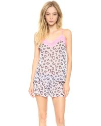 Hanky Panky Purrfectly Sheer Cami Greypink - Lyst