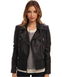 Vince Camuto Leather Moto Jacket with Quilted Patches - Lyst
