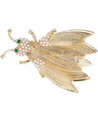 Topshop Freedom Found Collection Bug Brooch  Clear - Lyst