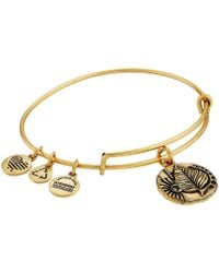 ALEX AND ANI - Ruler Of The Woods - A New Day Birch Bangle - Lyst