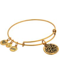 ALEX AND ANI - Ruler Of The Woods - Healer's Charm Reed Bangle - Lyst
