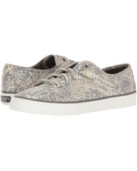 Sperry Top-Sider - Seacoast Python - Lyst