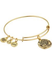 ALEX AND ANI - Ruler Of The Woods - Well Of Wisdom Hazel Bangle - Lyst