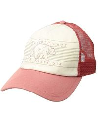 1893e59d The North Face - Low Pro Trucker Hat (faded Rose/vintage White) Baseball
