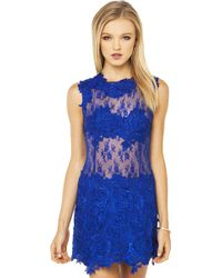 Akira Black Label Lace Applique Sheer Dress In Cobalt - Lyst