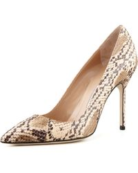 Manolo Blahnik Bb Watersnake Pump - Lyst