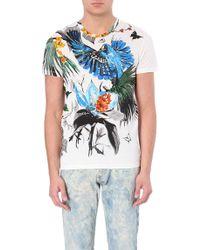 Roberto Cavalli Bird-Print Cotton T-Shirt - For Men - Lyst