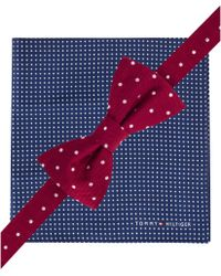 Tommy Hilfiger Polka Dot Bow Tie & Pin Dot Pocket Square Set - Lyst