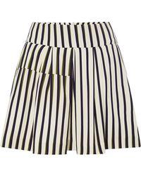 Peter Som Geometric Stripe Skirt with Pleats - Lyst