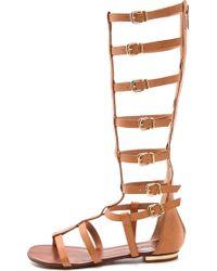 Schutz Cyby Flat Gladiator Sandals - Dawn - Lyst