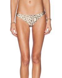 Zimmermann Essence Frill Bikini - Lyst
