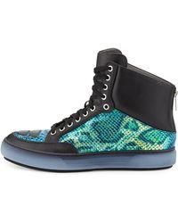 Alejandro Ingelmo Iridescent Snakeembossed Leather Sneaker - Lyst