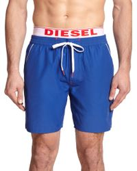 Diesel Dolphin Swim Trunks blue - Lyst