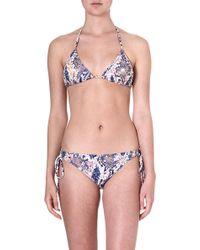 Matthew Williamson Blossom Snakeprint Triangle Bikini Orange - Lyst