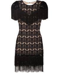 Skaist Taylor - Tallulah Fringed Cutout Lace Dress - Lyst