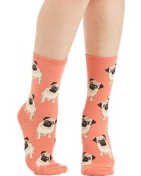 Socksmith Pug Life Socks In Melon - Lyst