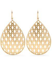 Jamie Wolf - 18kt Yellow Gold Woven Aladdin Earrings - Lyst