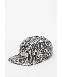 Adidas Originals Blue Palm 5panel Hat - Lyst