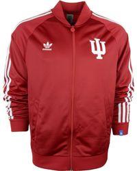 Adidas  Indiana Hoosiers Legacy Track Jacket - Lyst