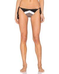 CA By Vitamin A - Nightbird Tie Side Bikini Bottom - Lyst