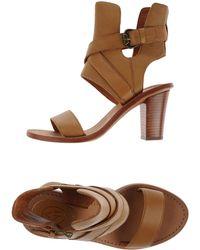 Ash Sandals brown - Lyst
