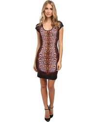 Just Cavalli Short Sleeve Animal Print Dress - Lyst