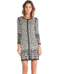 Velvet By Graham & Spencer Mya Snow Leopard Jacquard Dress - Lyst