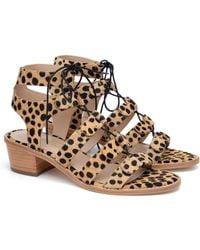 Loeffler Randall Timna Cheetah Haircalf Gladiator Sandal animal - Lyst