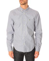 Lacoste Striped Red Shirt gray - Lyst