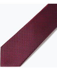 Zara Wide Diagonal Striped Tie - Lyst