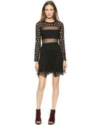 Elizabeth And James Valencia Dress - Black - Lyst