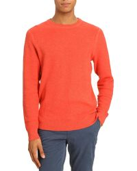 Tommy Hilfiger Cranberry Plain Sweater - Lyst
