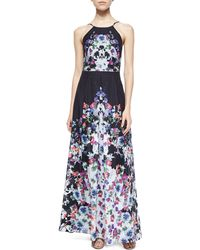 Phoebe - Halter Floral-print Pleated Gown - Lyst